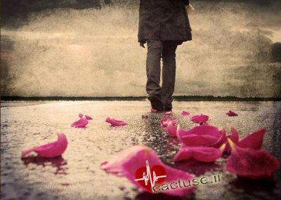 قدم به قدم زندگی